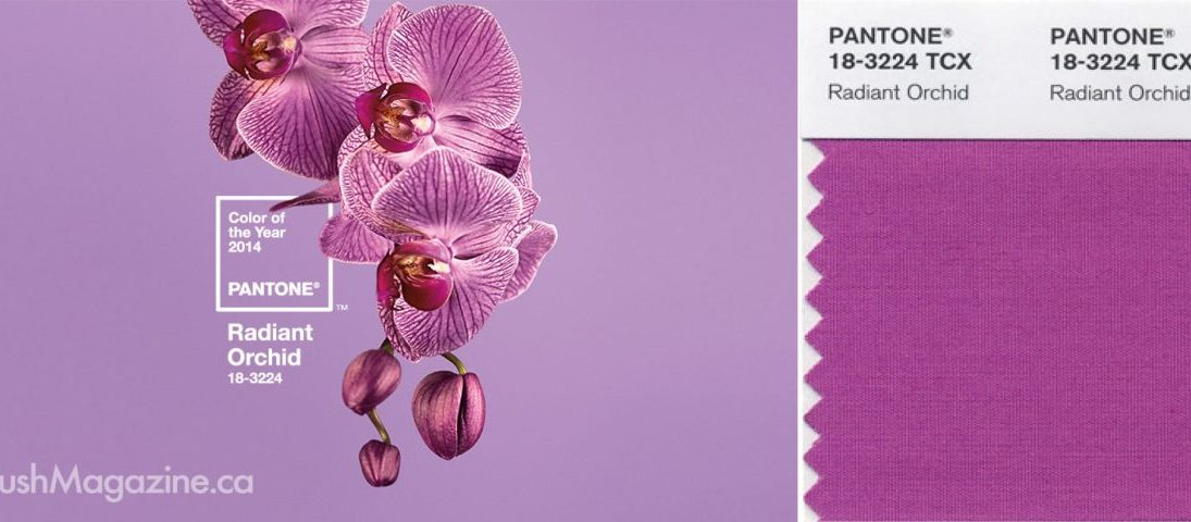 2014 pantone color of the year:radiant orchid